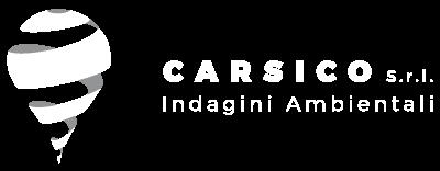 Carsico srl